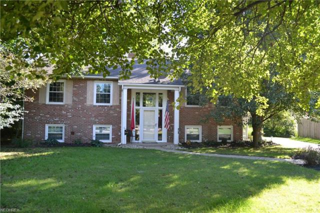 97 Trumbull Dr, Hudson, OH 44236 (MLS #4038421) :: Tammy Grogan and Associates at Cutler Real Estate