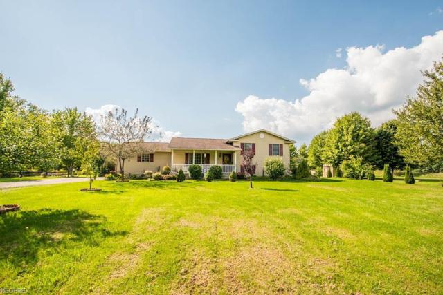 2910 S Duck Creek Rd, North Jackson, OH 44451 (MLS #4038482) :: Keller Williams Chervenic Realty