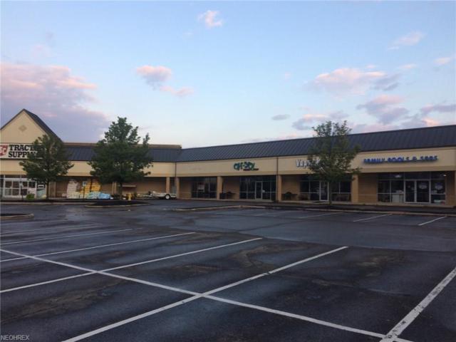 4182 Burbank, Wooster, OH 44691 (MLS #4038534) :: Keller Williams Chervenic Realty