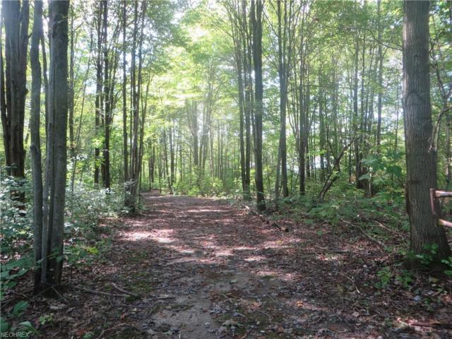 VL Timber Woods, Austinburg, OH 44084 (MLS #4038651) :: The Crockett Team, Howard Hanna