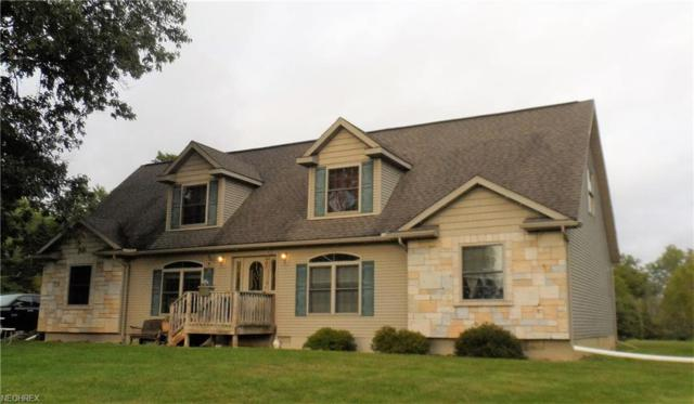8001 Friendsville Rd, Lodi, OH 44254 (MLS #4039087) :: RE/MAX Valley Real Estate