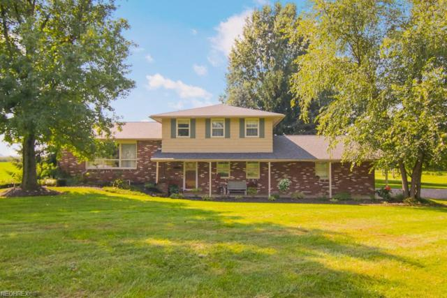 10487 Steiner Rd, Rittman, OH 44270 (MLS #4039201) :: RE/MAX Trends Realty