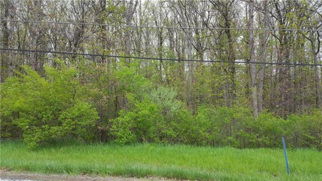 3919 River Rd Parcel 2, Perry, OH 44081 (MLS #4039259) :: RE/MAX Valley Real Estate