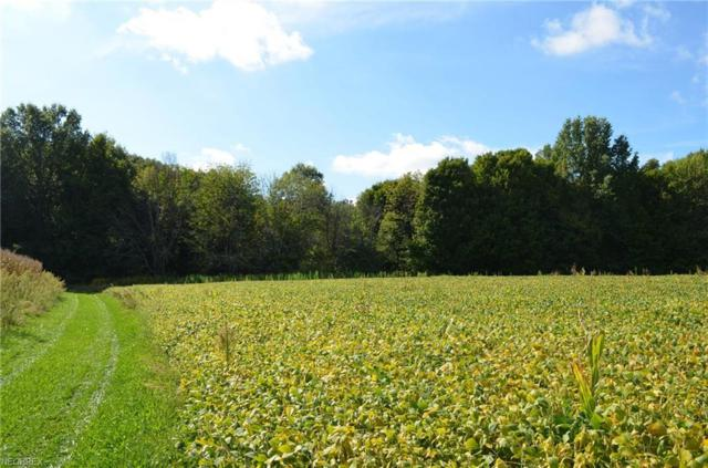 Parcel A New Milford Rd, Randolph, OH 44201 (MLS #4039272) :: RE/MAX Valley Real Estate