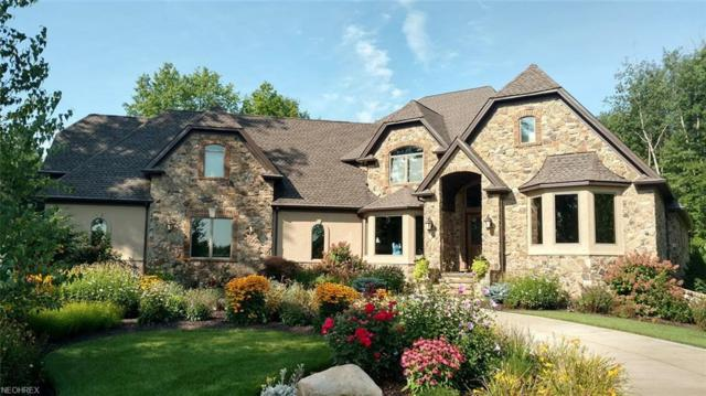 5687 Appian Way, Wadsworth, OH 44281 (MLS #4039317) :: Keller Williams Chervenic Realty