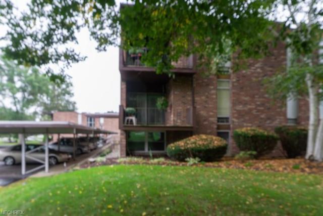 2960 N River Rd NE D15, Warren, OH 44483 (MLS #4039351) :: The Crockett Team, Howard Hanna