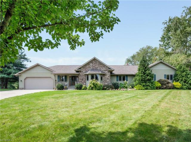 99 Kehner Rd, Mogadore, OH 44260 (MLS #4039362) :: RE/MAX Trends Realty