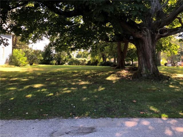 223 Woodland Ave, Conneaut, OH 44030 (MLS #4039759) :: The Crockett Team, Howard Hanna