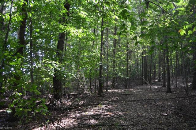 Parcel B New Milford Rd, Randolph, OH 44201 (MLS #4040094) :: RE/MAX Trends Realty