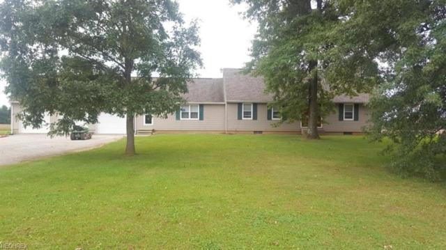1483 County Road 219, Marengo, OH 43334 (MLS #4040204) :: PERNUS & DRENIK Team
