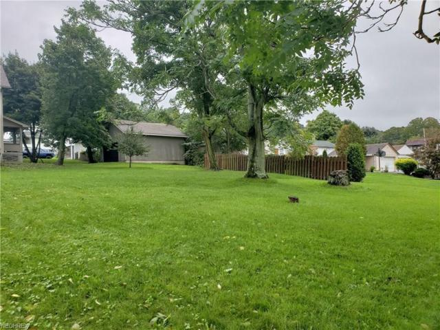 V/L Youngstown Lowellville, Lowellville, OH 44436 (MLS #4040334) :: RE/MAX Edge Realty