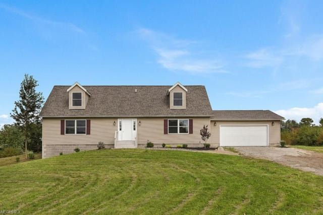 14705 Ford Rd, Madison, OH 44057 (MLS #4040364) :: PERNUS & DRENIK Team