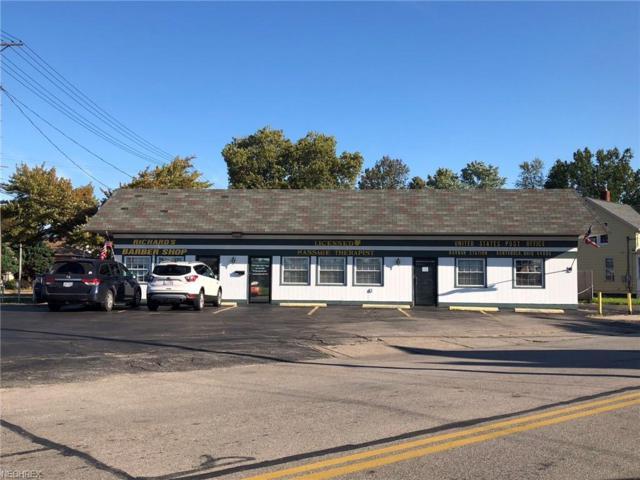 718- 712 Lake Avenue, Ashtabula, OH 44004 (MLS #4040881) :: RE/MAX Edge Realty