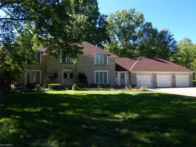 5100 Oak Point Rd, Lorain, OH 44053 (MLS #4041032) :: PERNUS & DRENIK Team