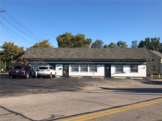 718 Lake Avenue, Ashtabula, OH 44004 (MLS #4041091) :: RE/MAX Edge Realty