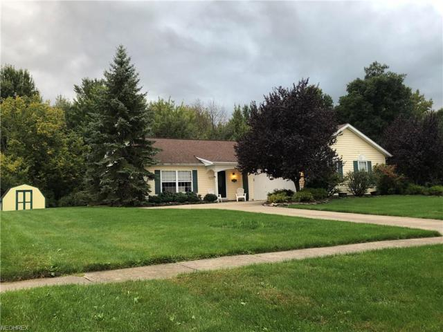 773 Sherwood Dr, Madison, OH 44057 (MLS #4041116) :: RE/MAX Edge Realty