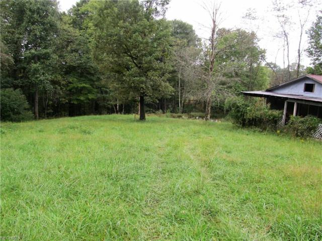 002 Gooseneck Run Rd, Walker, WV 26180 (MLS #4041596) :: RE/MAX Valley Real Estate
