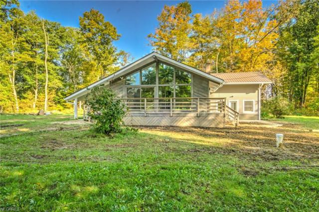 10041 State Route 305, Garrettsville, OH 44231 (MLS #4041857) :: RE/MAX Edge Realty