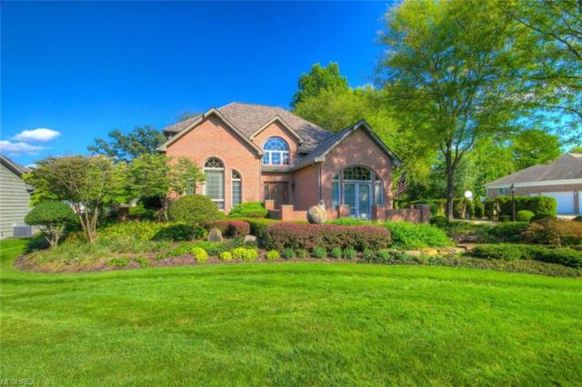 461 Shadydale Dr, Canfield, OH 44406 (MLS #4041942) :: RE/MAX Edge Realty