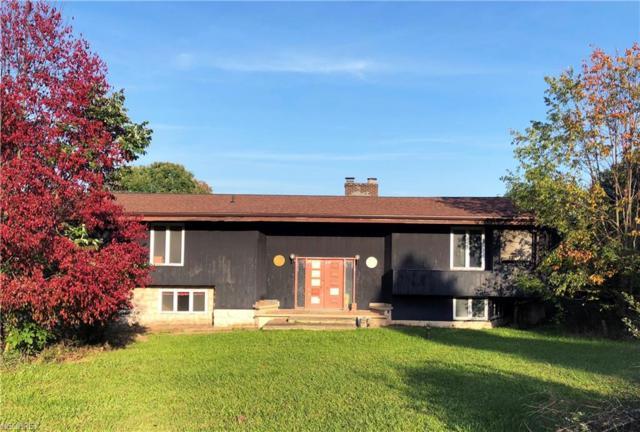 1601 King Rd, Hinckley, OH 44233 (MLS #4041955) :: PERNUS & DRENIK Team