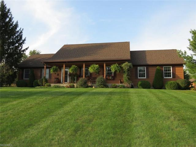 48792 Peck Wadsworth Rd, Wellington, OH 44090 (MLS #4042064) :: RE/MAX Edge Realty