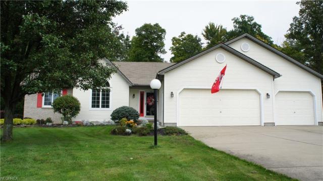 225 Clearwater Cv N, Austintown, OH 44515 (MLS #4042663) :: RE/MAX Valley Real Estate