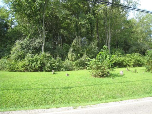 Sprucevale Rd, Calcutta, OH 43920 (MLS #4042758) :: RE/MAX Valley Real Estate