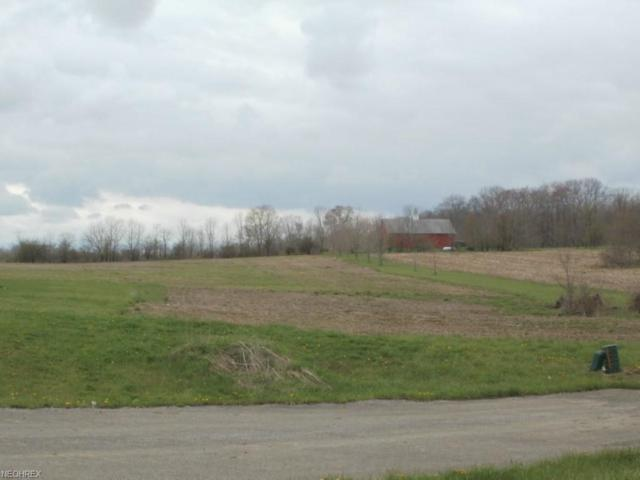 Wheeler Rd, Garrettsville, OH 44231 (MLS #4042887) :: RE/MAX Edge Realty