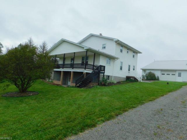 10744 Fryburg Rd, Fredericksburg, OH 44627 (MLS #4043039) :: PERNUS & DRENIK Team
