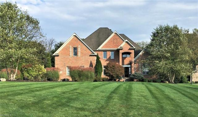3799 Meadowvale Drive, Akron, OH 44333 (MLS #4043071) :: RE/MAX Trends Realty