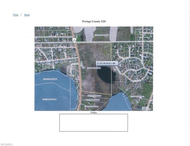 State Route 43, Kent, OH 44240 (MLS #4043247) :: PERNUS & DRENIK Team