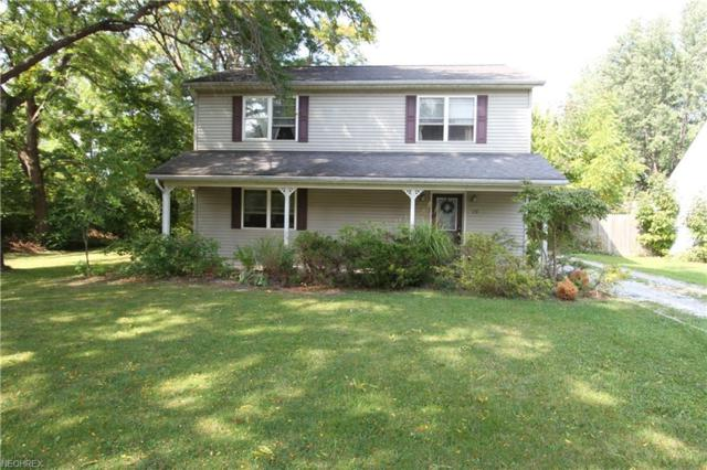 428 Singer Ave, Painesville Township, OH 44077 (MLS #4043262) :: RE/MAX Edge Realty