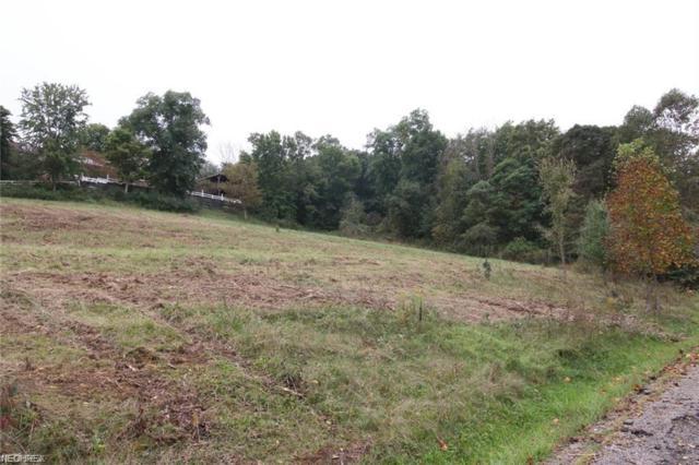 Eddie Drive, Dresden, OH 43821 (MLS #4043302) :: Keller Williams Chervenic Realty