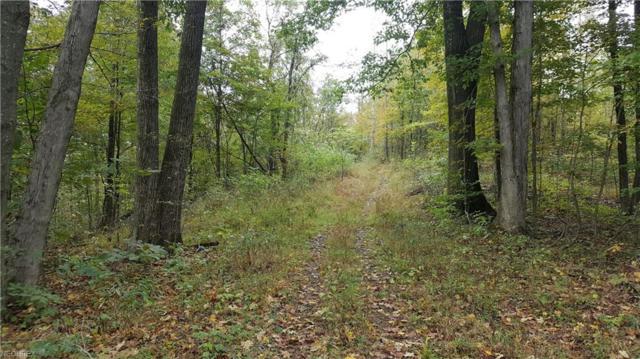 Township Road 86, Lowell, OH 45744 (MLS #4043423) :: PERNUS & DRENIK Team