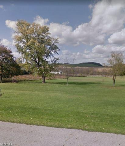 Field Stone, East Liverpool, OH 43920 (MLS #4043669) :: RE/MAX Valley Real Estate