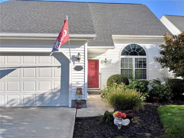 721 Coralberry Ln, Madison, OH 44057 (MLS #4043974) :: RE/MAX Edge Realty
