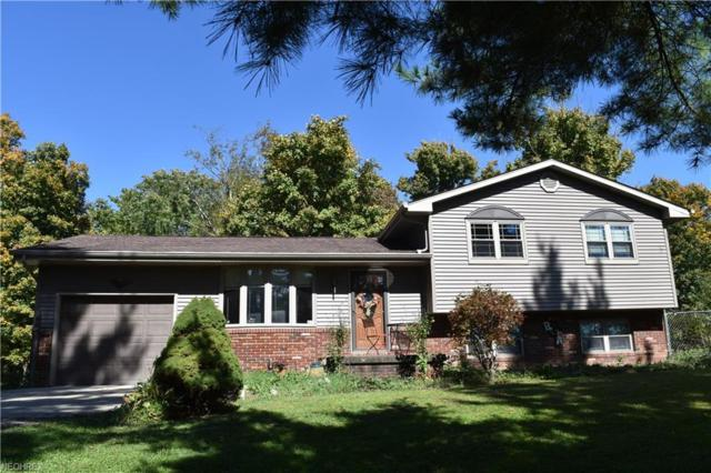 44301 National Rd, Belmont, OH 43718 (MLS #4044444) :: RE/MAX Edge Realty