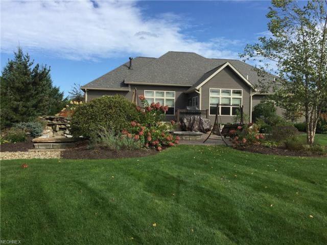 2854 Wind Field Dr, Medina, OH 44256 (MLS #4044560) :: RE/MAX Edge Realty