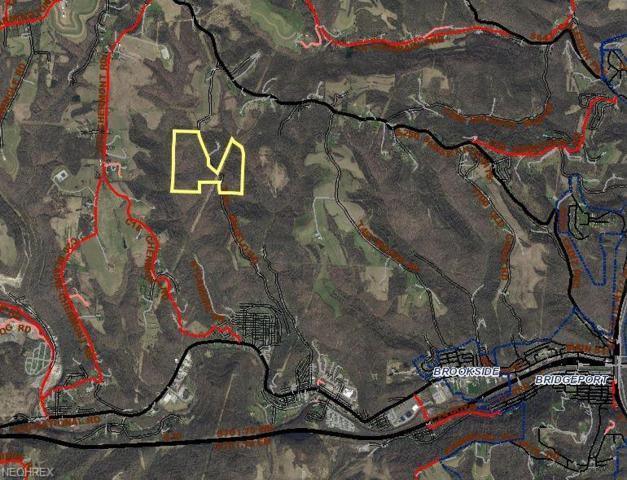 High & Dry Rd, Lansing, OH 43934 (MLS #4044655) :: The Crockett Team, Howard Hanna