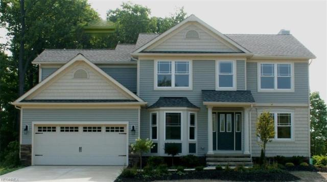 SL 35 Azalea Ridge Drive, Perry, OH 44081 (MLS #4044810) :: The Crockett Team, Howard Hanna