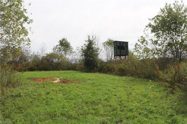 Township Road 71, Killbuck, OH 44637 (MLS #4044990) :: The Crockett Team, Howard Hanna