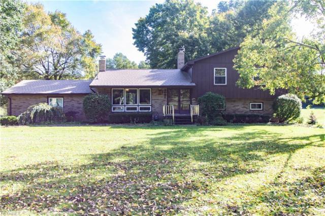 3687 Niles Carver Rd, Mineral Ridge, OH 44440 (MLS #4045511) :: The Crockett Team, Howard Hanna
