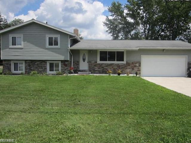 747 Alaho St, Akron, OH 44305 (MLS #4045665) :: RE/MAX Trends Realty