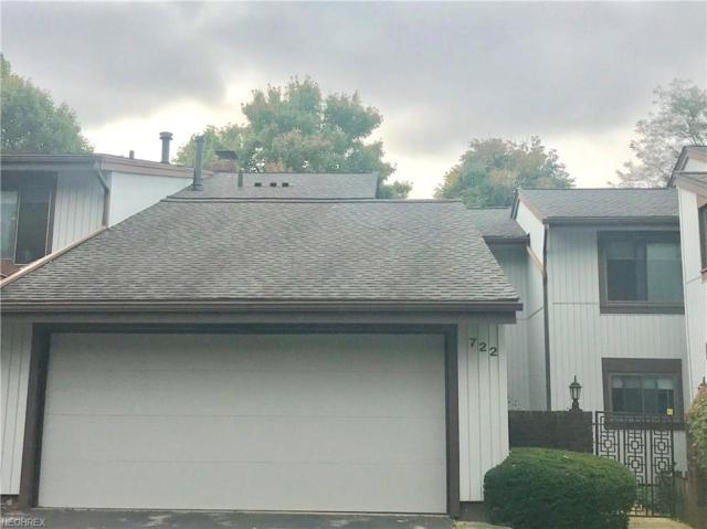 722 Tinkers Ln, Northfield, OH 44067 (MLS #4045916) :: RE/MAX Trends Realty