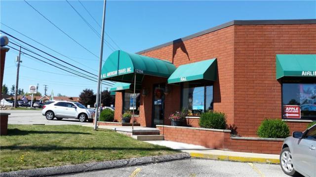 12394 Kinsman Rd Se, Newbury, OH 44065 (MLS #4046058) :: The Crockett Team, Howard Hanna