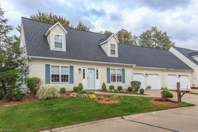 327 Chesapeake Cv, Painesville Township, OH 44077 (MLS #4046074) :: PERNUS & DRENIK Team
