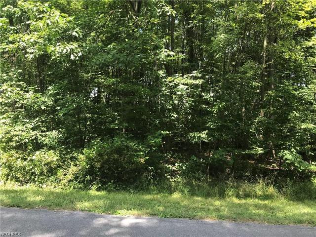 S Park Ln, Roaming Shores, OH 44084 (MLS #4046236) :: RE/MAX Edge Realty