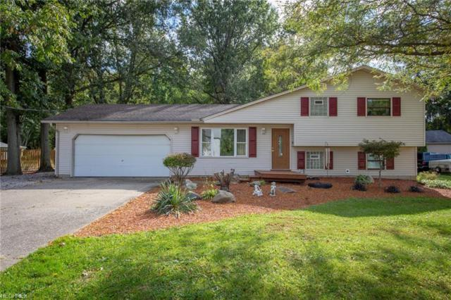33821 Mills Rd, North Ridgeville, OH 44039 (MLS #4046376) :: RE/MAX Valley Real Estate