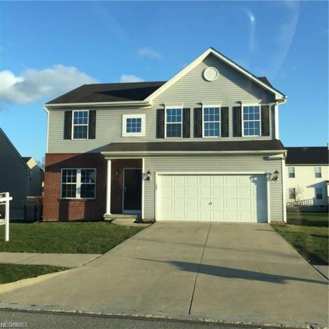 205 S Settlers Ln, Painesville, OH 44077 (MLS #4046817) :: The Crockett Team, Howard Hanna