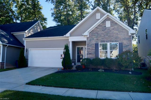 38455 Foxglen Ave, Avon, OH 44011 (MLS #4046895) :: The Crockett Team, Howard Hanna